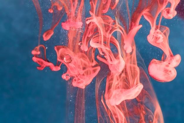 Medusa sottosopra sott'acqua Foto Gratuite