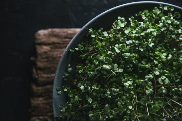 Microgreen in un piatto grigio su un rustico in legno Foto Premium