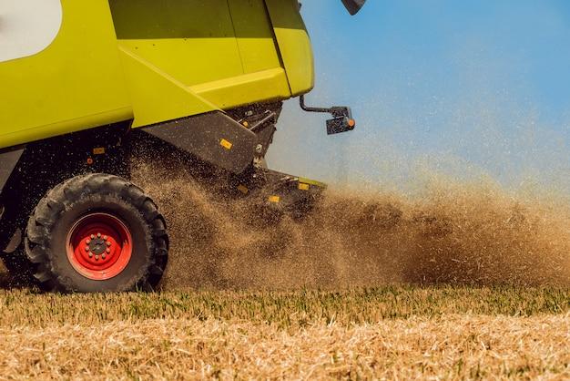 Mietitrebbia in azione sul campo di grano Foto Premium