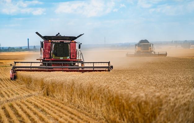 Mietitrebbiatrice lavorando sul campo di grano. il settore agricolo Foto Premium
