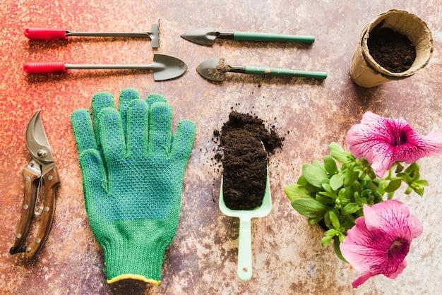 Mini attrezzi da giardinaggio; cesoie; guanti; suolo; pot della torba con la pianta del fiore della petunia sul contesto del grunge Foto Gratuite