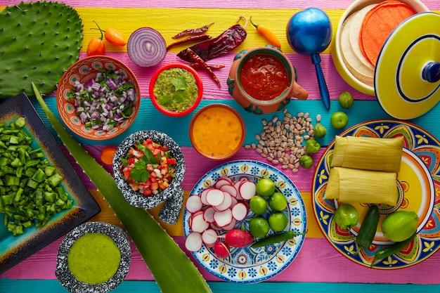 Mix di cibo messicano con salse nopal e tamale Foto Premium