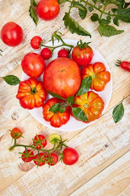 Mix di pomodori e foglie Foto Premium