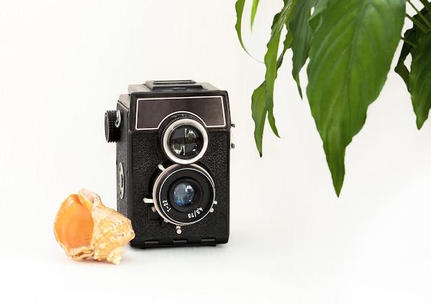 Mock up muro bianco, vecchia macchina fotografica, pianta e conchiglia. Foto Premium
