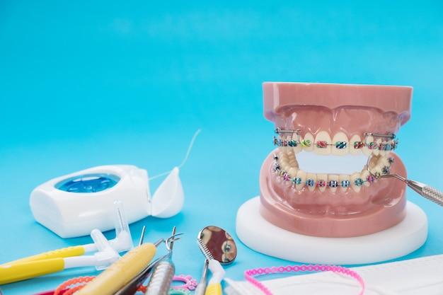 Modello ortodontico e strumento dentista Foto Premium