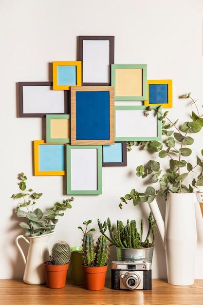 Molti fotogrammi sulla parete e sulle piante scaricare - Piante da parete ...