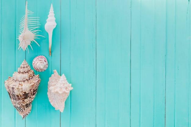 Molti seashells su legno verniciato Foto Gratuite