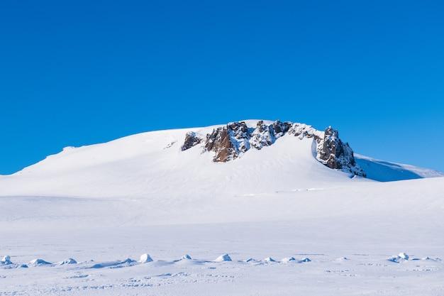 Montagna della neve in islanda Foto Premium