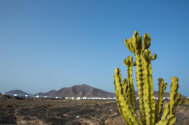 Montagna di ajaches a playa blanca lanzarote Foto Premium