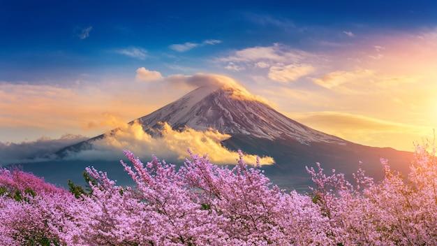 Montagna di fuji e fiori di ciliegia in primavera, giappone. Foto Premium