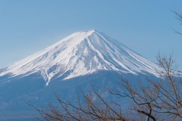 Montagna fuji in inverno Foto Premium