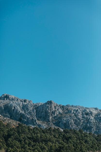 Montagna pietrosa e alberi con copia-spazio Foto Gratuite