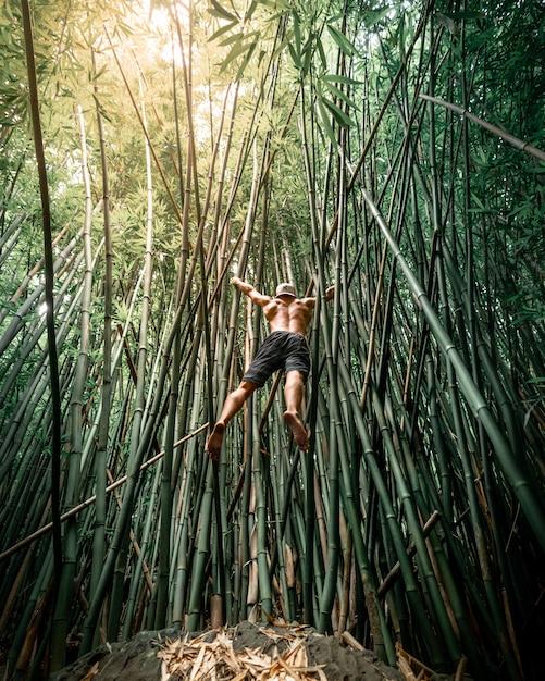 Montare il maschio con la camicia fuori saltando su alberi di bambù alle hawaii Foto Gratuite