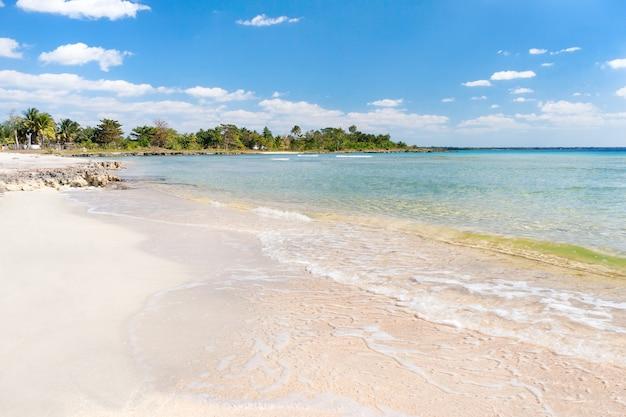 Morbida onda del mare sulla spiaggia di sabbia. cielo blu, sabbia bianca, palme e mare azzurro. cuba, varadero, mar dei caraibi. Foto Premium