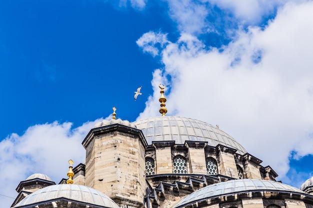 Moschea di istanbul Foto Premium