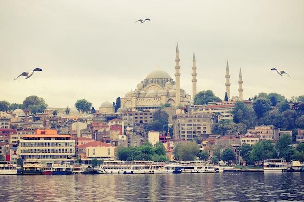 Moschea suleymaniye sulle rive del bosforo a istanbu Foto Premium