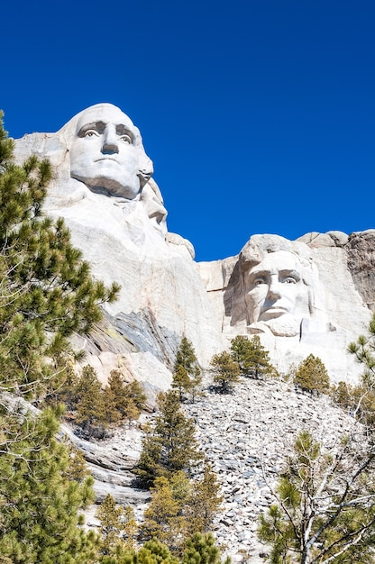 Mount rushmore national monument in south dakota. Foto Premium