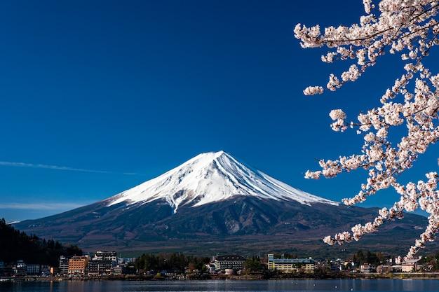 Mt. fuji in primavera con i fiori di ciliegio a kawaguchiko fujiyoshida, in giappone. Foto Premium