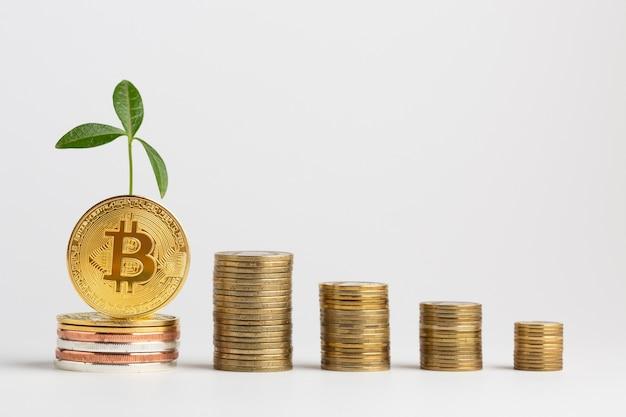 Mucchi di bitcoin con pianta Foto Gratuite