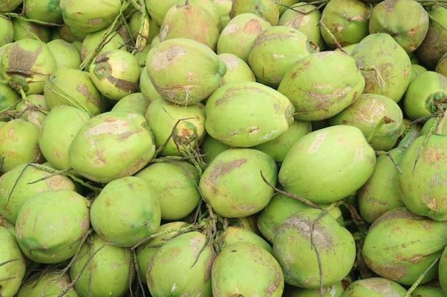 Mucchio delle noci di cocco giovani fresche tropicali che vendono per il succo di cocco Foto Premium