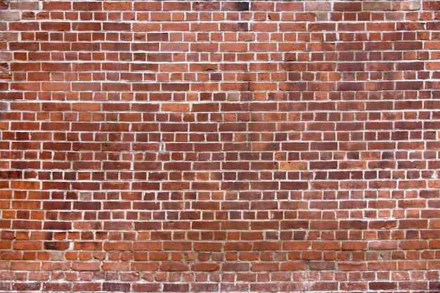 Muro di mattoni con mattoni nuovi Foto Gratuite