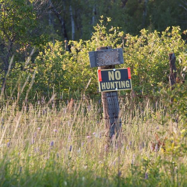 Nessun segno di caccia a lake of the woods, ontario Foto Premium