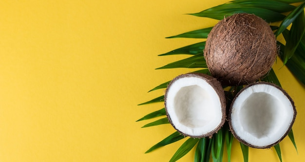 Noce di cocco con foglie verdi su sfondo giallo. Foto Premium