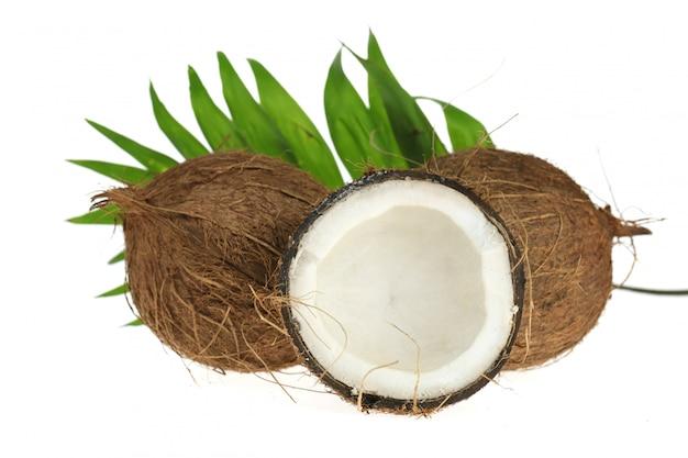 Noce di cocco. mezzo cocco fresco e una foglia di palma isolato su uno sfondo bianco. Foto Premium