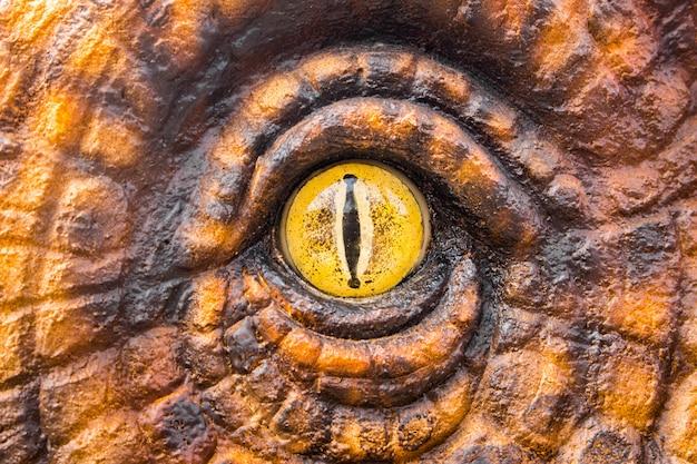 Occhi dei cacciatori di dinosauri. Foto Premium