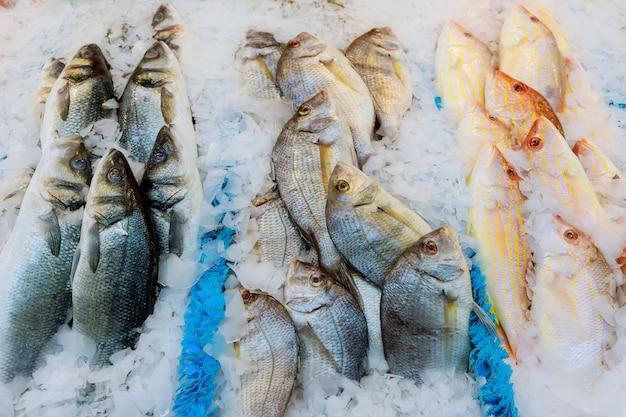 Offerta di pesce fresco refrigerato con ghiaccio tritato in una zona di pesca Foto Premium
