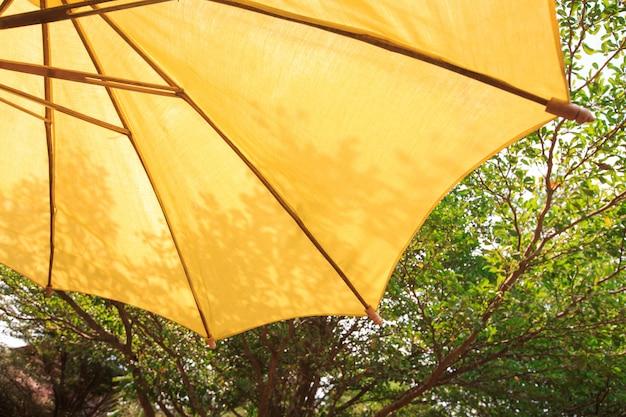 Ombrello del patio con la priorità bassa dell'albero Foto Premium