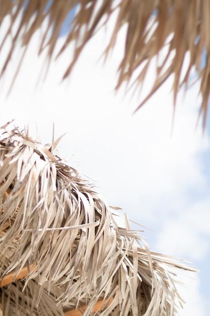 Ombrello di palma in primo piano in riva al mare Foto Gratuite