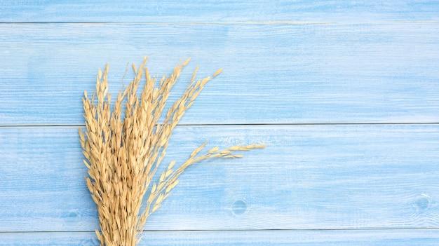 Orecchio di risaia (riso tailandese asciutto) su un tavolo di legno blu. Foto Premium