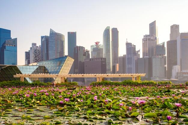 Orizzonte di singapore del distretto aziendale e di marina bay nel giorno, priorità alta con lo stagno di loto, singapore Foto Premium