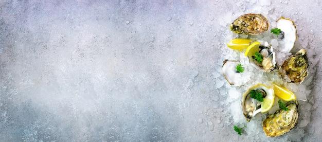 Ostriche fresche aperte, limone, erbe aromatiche, ghiaccio su pietra grigia concreta. Foto Premium