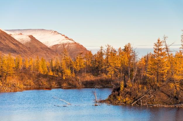 Paesaggio autunnale con lago foresta e montagne Foto Premium