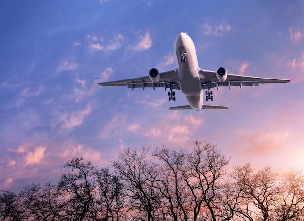 Paesaggio con aereo passeggeri bianco Foto Premium