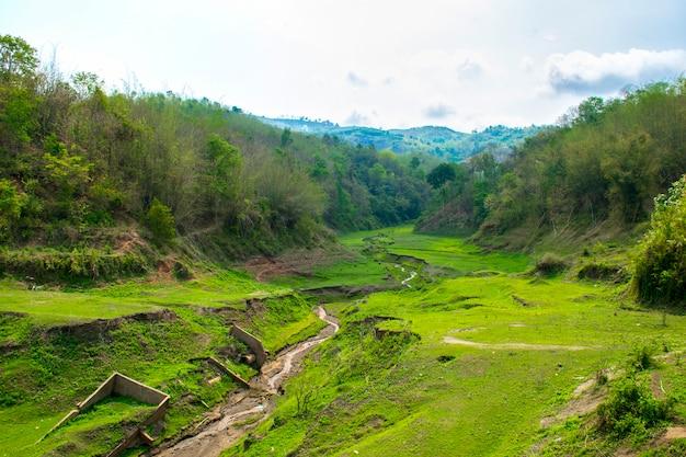 Paesaggio con montagne, foresta e un fiume di fronte. splendido scenario Foto Premium