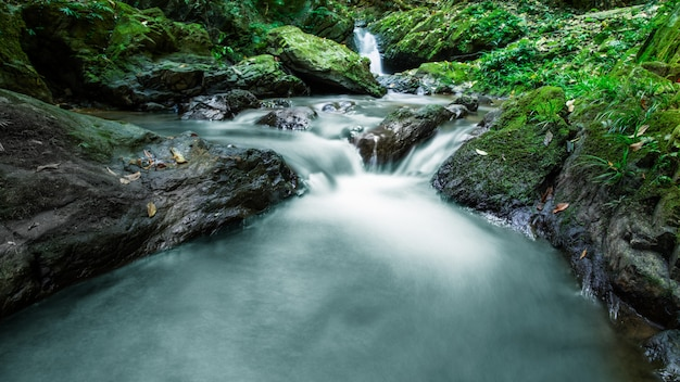 Paesaggio del lago di montagna Foto Premium
