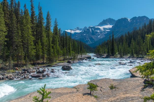 Paesaggio della foresta del canada con la grande montagna nei precedenti e il fiume che scorre al canyon di mistaya, alberta Foto Premium