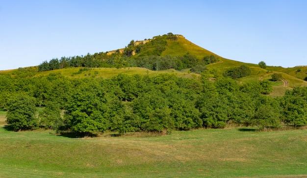 Paesaggio della regione pedemontana in autunno Foto Premium