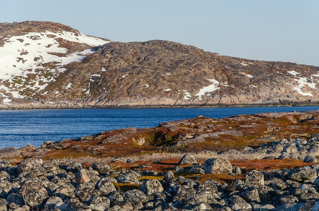 Paesaggio della tundra al mare di barents in teriberka, murmansk. Foto Premium