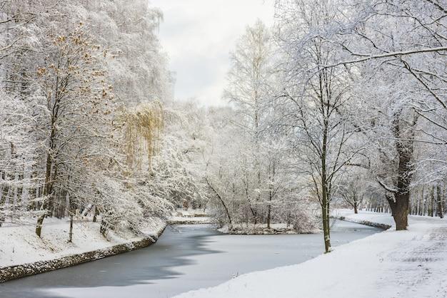Paesaggio forestale invernale alberi sotto uno spesso strato di neve. russia, mosca, parco sokolniki Foto Premium