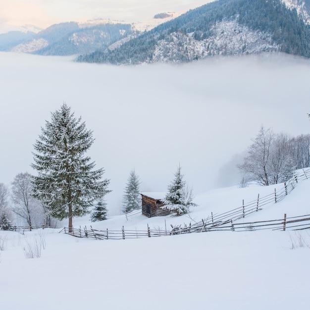 Paesaggio invernale in montagna Foto Premium