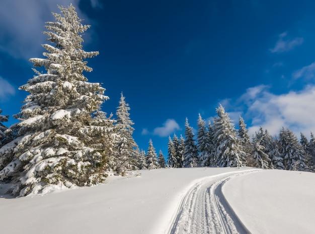 Paesaggio invernale mozzafiato e pittoresco Foto Premium