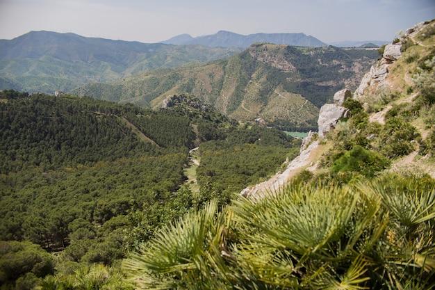 Paesaggio montano Foto Gratuite