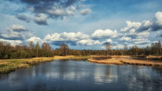 Paesaggio primaverile russo con riflessi di alberi nel lago Foto Premium