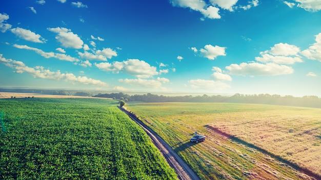 Paesaggio su un campo verde. Foto Premium