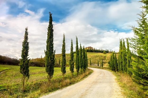 Paesaggio tipico della toscana. un viale di cipressi conduce a una fattoria in val d'orcia. Foto Premium