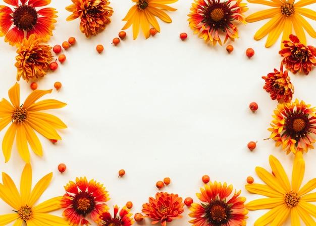 Pagina dei fiori e delle bacche di sorbo arancio, gialli e rossi di autunno su bianco con il posto per testo. autunno Foto Premium